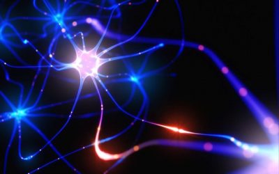 What the Benefits of Neuroplasticity Mean for You & I